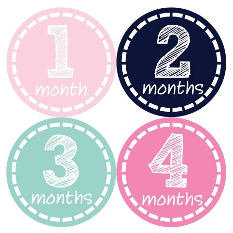 Months in Motion 176 Monthly Baby Stickers Milestone Newborn Girl Pink Just peel