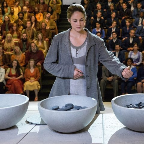 Tris Prior is warned she is Divergent and will never fit into any one group. When she discovers a conspiracy by a faction leader to destroy all Divergents