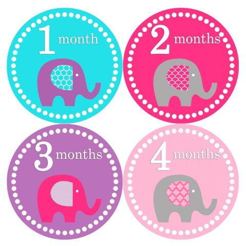 Months in Motion 085 Monthly Baby Stickers Baby Girl Month 1-12 Milestone Age Just peel